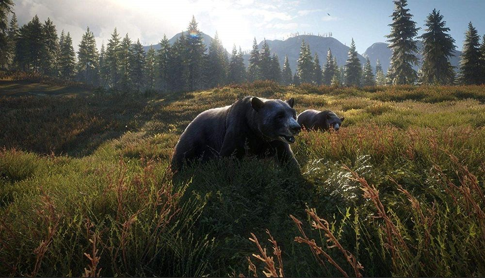 The Hunter Call of The Wild 2019 Edition for PS4 to Rent